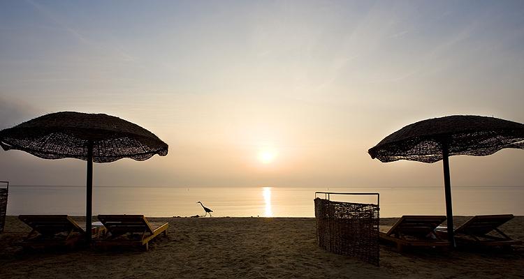 Gorgonia Beach Resort, Marsa Alam