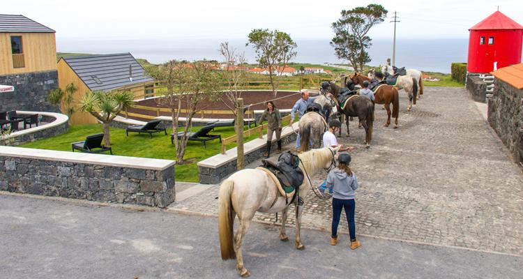 Patio Horse Lodge, Cedros